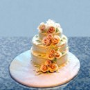 130x130 sq 1248911085464 cake19