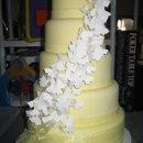130x130 sq 1260158232234 cakes039