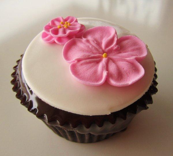 2tarts Bakery Reviews, San Antonio, Corpus Christi Cake