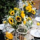 130x130 sq 1335509252087 sunflowertablescape21