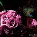 130x130 sq 1277163723170 roses
