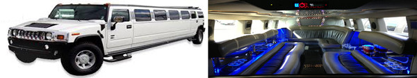photo 4 of Platinum Limousine