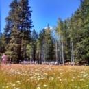 130x130 sq 1425088740028 aspen meadow cropped