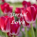 130x130 sq 1384798652698 spring eternal love