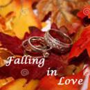130x130_sq_1385056388225-falling-in-love-