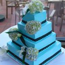 130x130 sq 1306087684771 tiffanyblueweddingcake