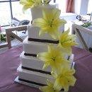 130x130 sq 1313085765368 cake0037