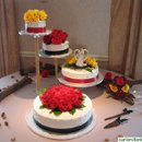 130x130 sq 1313085769034 cake0031
