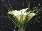 220x220 1313086400866 bouquet0033