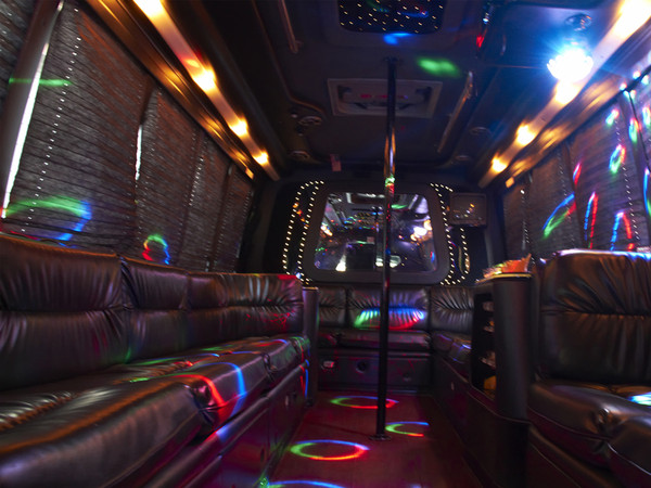 1402604662070 22 Pax Party Bus1 Alexandria wedding transportation
