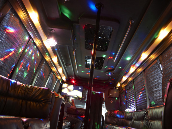 1402604666758 22 Pax Party Bus4 Alexandria wedding transportation