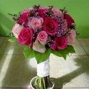 130x130_sq_1249414276365-bridesfuschia