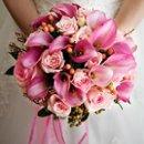 130x130_sq_1249414499709-pinkcallaround9984603