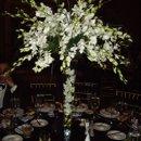 130x130_sq_1267303645801-orchidcenterpiece