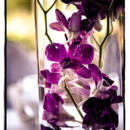 130x130 sq 1472841453145 flowers 31
