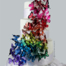 130x130 sq 1397508705190 butterfly cake