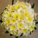 130x130 sq 1415003517277 overhead plumeria bouquet