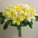 130x130 sq 1415350276258 yellow plumeria bouquet