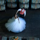 130x130_sq_1358966740953-coupledancinginbarrels