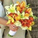 130x130 sq 1252075583760 tulipslilies