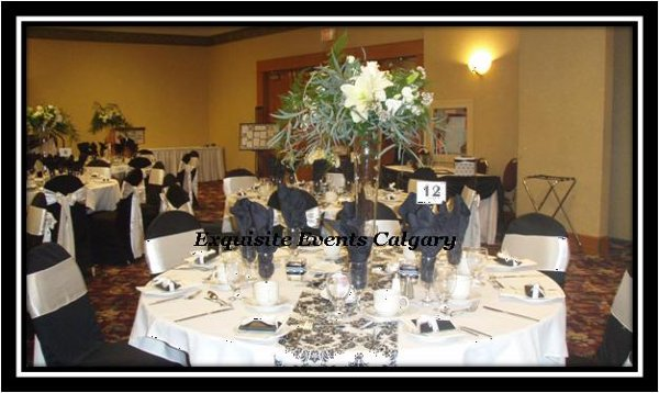 photo 8 of Exquisite Events