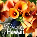 130x130 sq 1266621456608 bloomsofhawaiitile4