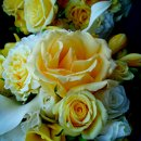 130x130 sq 1296604324815 yellowandwhiteweddingflowers