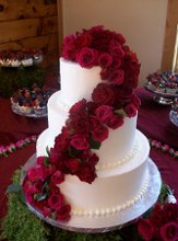 220x220 1286310188690 weddingcakesvacation81509cakes114