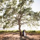 130x130 sq 1464733781186 kunde family winery wedding liz dan photojournalis