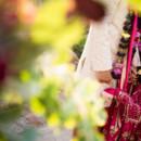 130x130 sq 1464737379833 hummingbird nest ranch authentic indian wedding un