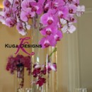 130x130 sq 1456858288180 navy blue and pink phalanopsis orchid tall centerp