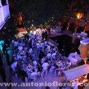 130x130_sq_1291299925050-fiesta1jpg