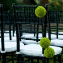130x130 sq 1369953476405 stellar events pic green carnations