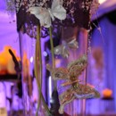 130x130 sq 1369954517814 stellar events pic butterfly centerpiece