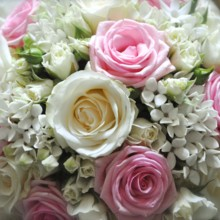 220x220 sq 1405100643001 best white and pink wedding flowers hd wallpapers