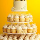 130x130_sq_1327508990648-cupcake02