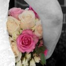130x130 sq 1251823856079 susanflowersweb