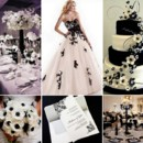 130x130 sq 1386793019368 black and white inspiration board