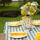 130x130 sq 1400600842253 outdoor spring tablescape detail