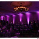 130x130_sq_1348161469540-purplewestin0007