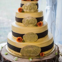 220x220 sq 1452619729830 cowboy theme wedding cake
