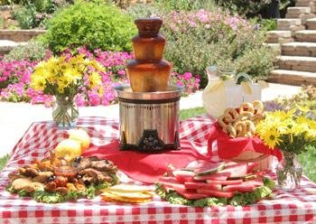 photo 6 of A Taste of Chocolate - Chocolate fountain