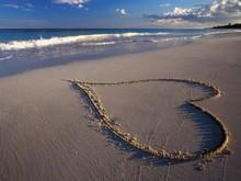 220x220 1381957250312 tropical hearts