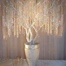 130x130 sq 1253411366800 elegance