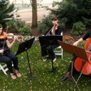 130x130_sq_1296537994207-stringtrio2