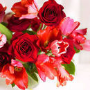 130x130 sq 1528724665 4b5f787bb8a5b00f 1441214299767 red roses and tulips