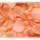 130x130 sq 1365091124122 pe peach 02