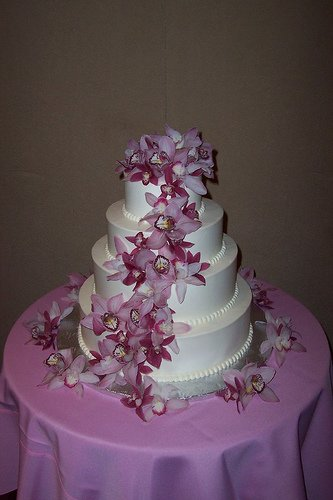 photo 4 of Cake E-Lusions