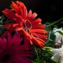 130x130 sq 1254782529619 ringinflower2