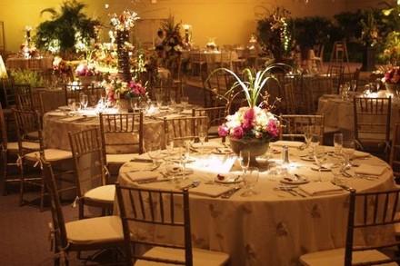 Tampa wedding rentals reviews for 165 rentals first class rentals of tampa bay junglespirit Images